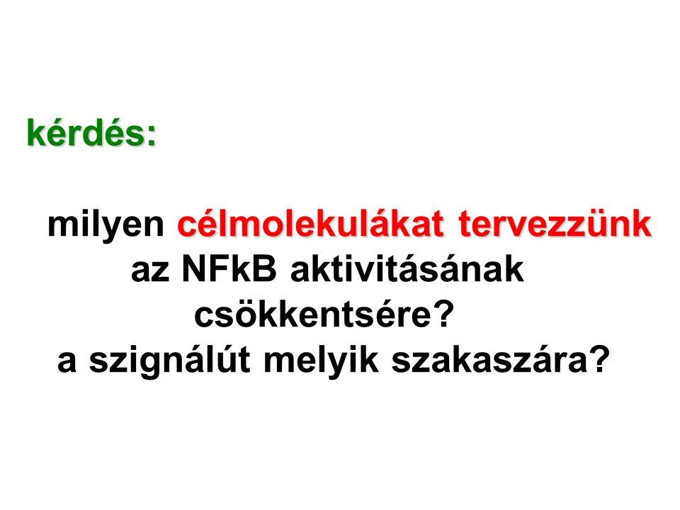 kérdés: milyen célmolekulákat tervezzünk. az NFkB aktivitásának.