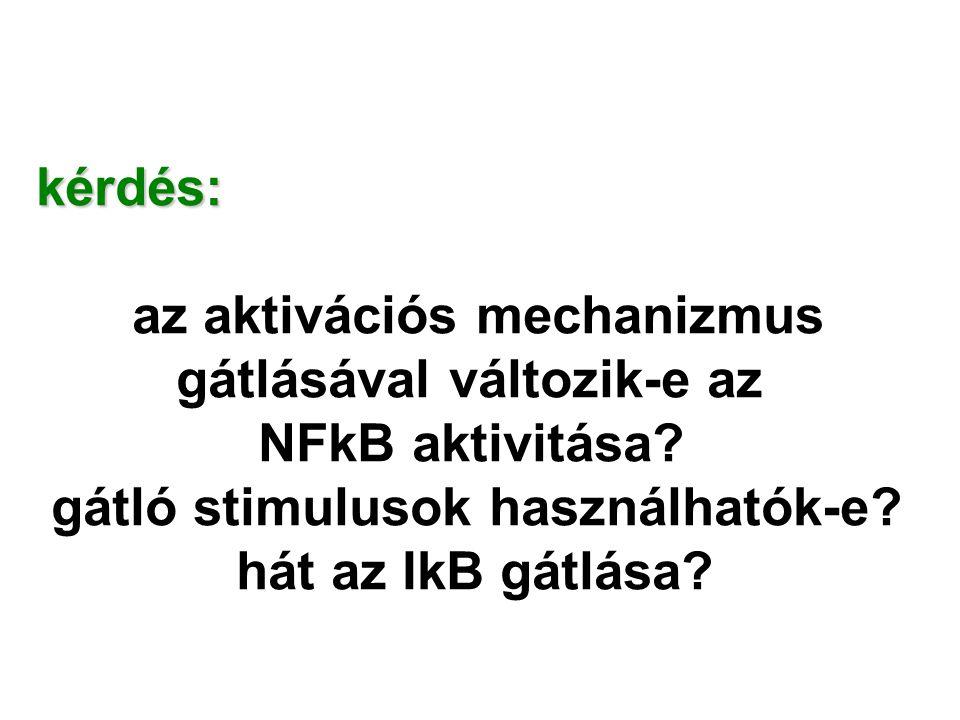 kérdés: az aktivációs mechanizmus. gátlásával változik-e az. NFkB aktivitása gátló stimulusok használhatók-e