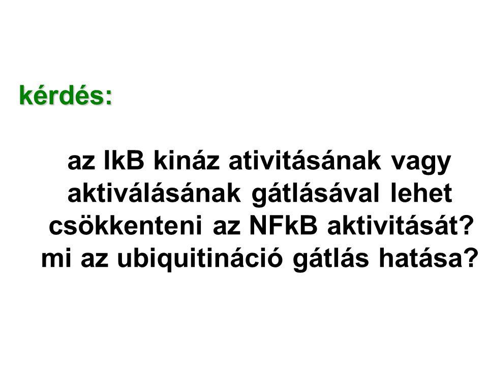 kérdés: az IkB kináz ativitásának vagy. aktiválásának gátlásával lehet. csökkenteni az NFkB aktivitását
