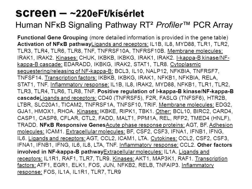 screen – ~220eFt/kísérlet