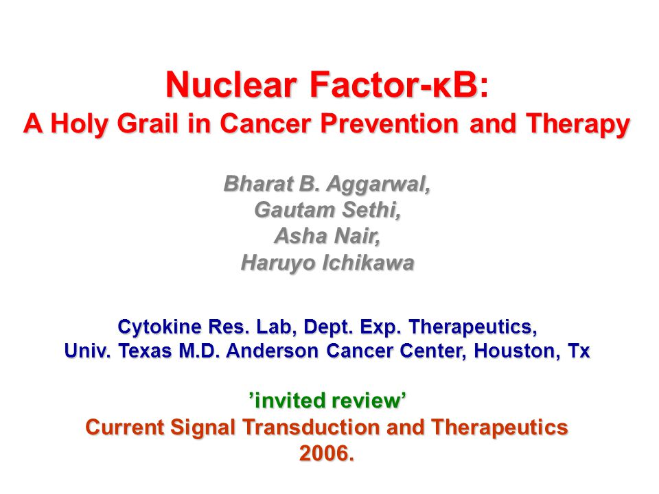 Nuclear Factor-κB: A Holy Grail in Cancer Prevention and Therapy