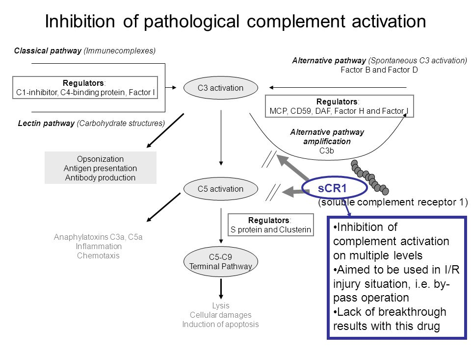 Inhibition of pathological complement activation