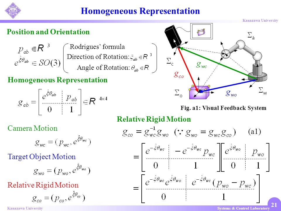 Homogeneous Representation