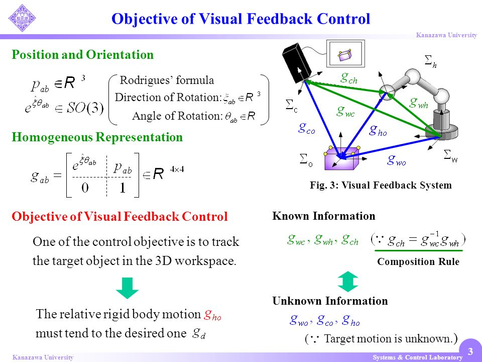 Objective of Visual Feedback Control