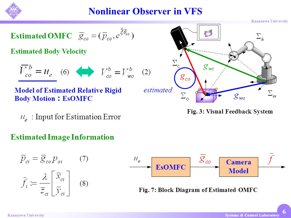 Nonlinear Observer in VFS