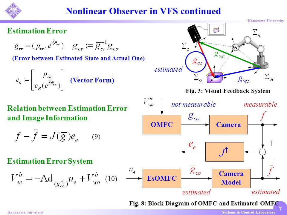 Nonlinear Observer in VFS continued