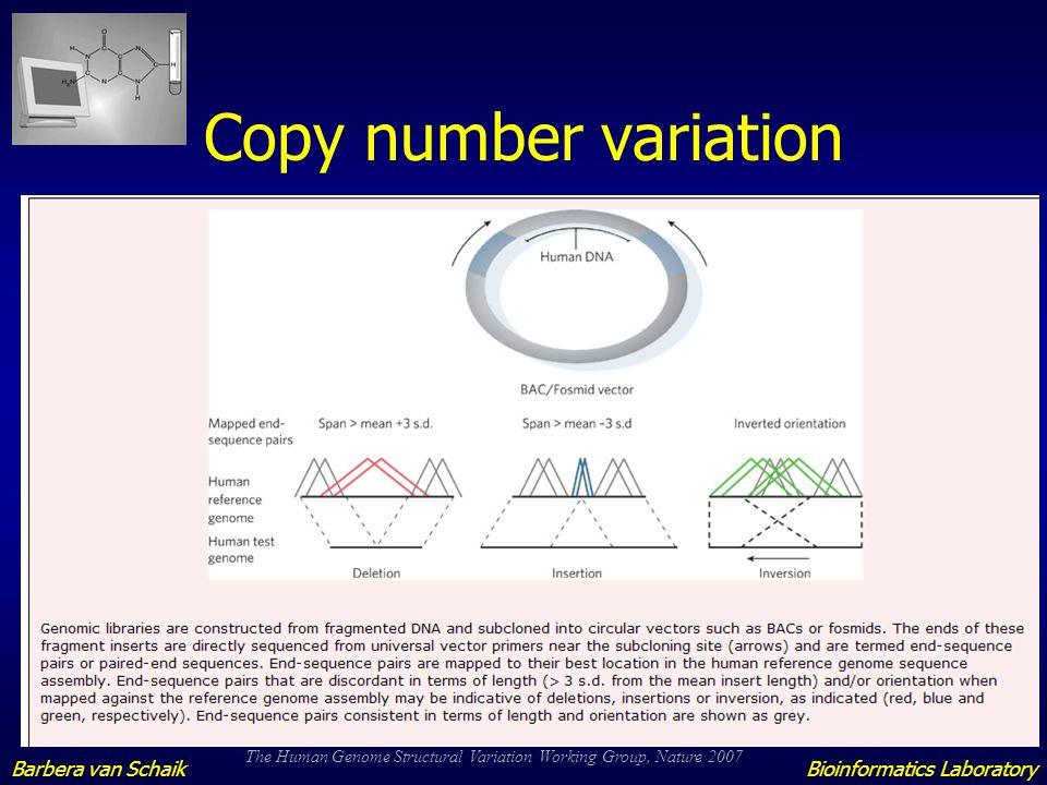 Copy number variation Barbera van Schaik Bioinformatics Laboratory