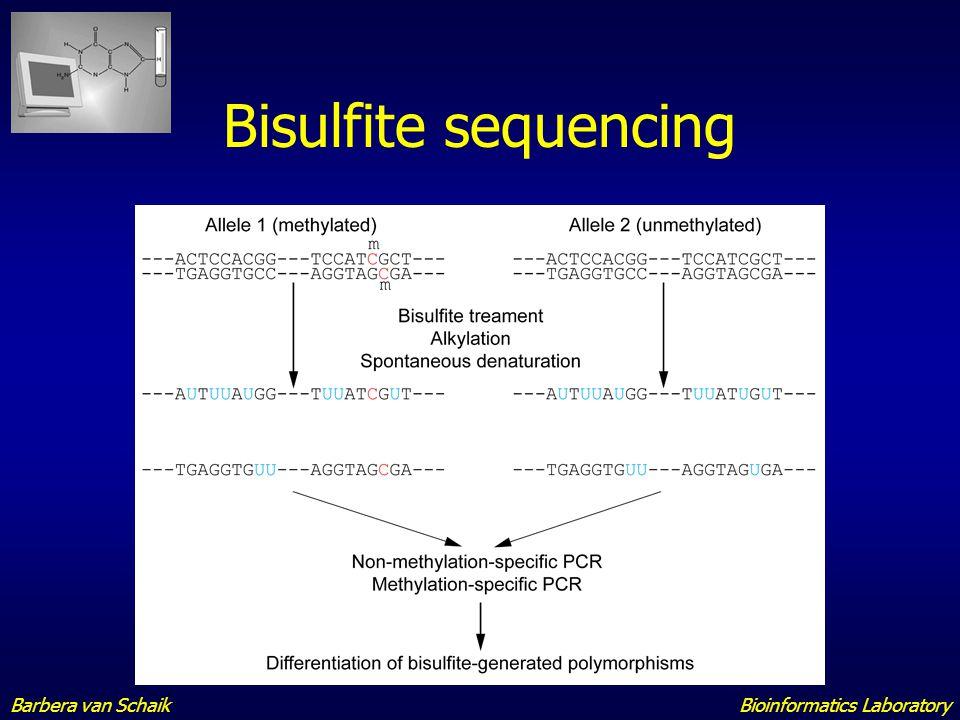 Bisulfite sequencing Barbera van Schaik Bioinformatics Laboratory