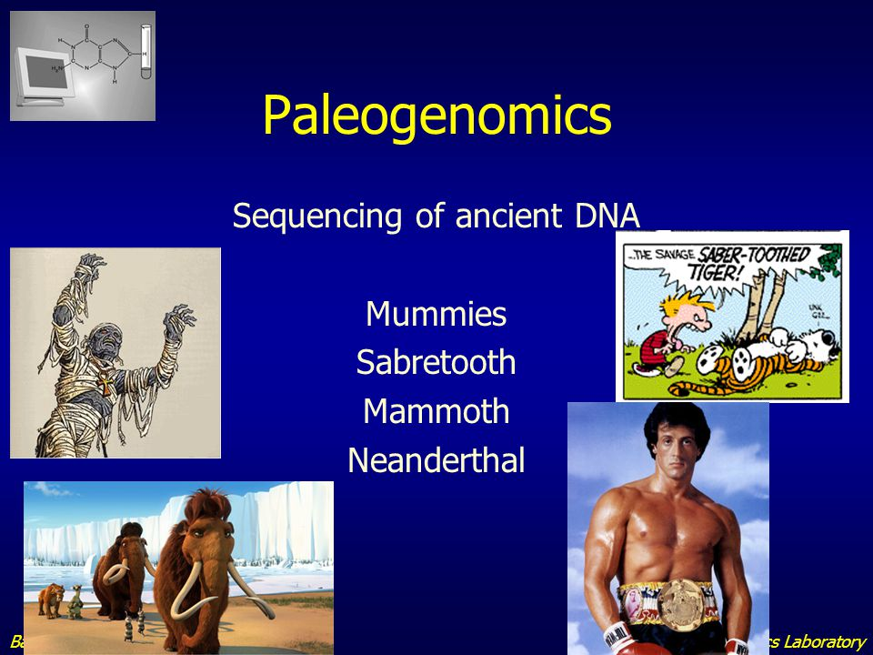 Sequencing of ancient DNA