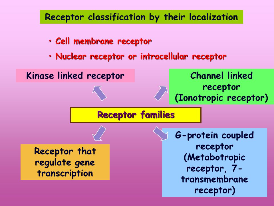 Receptor classification by their localization