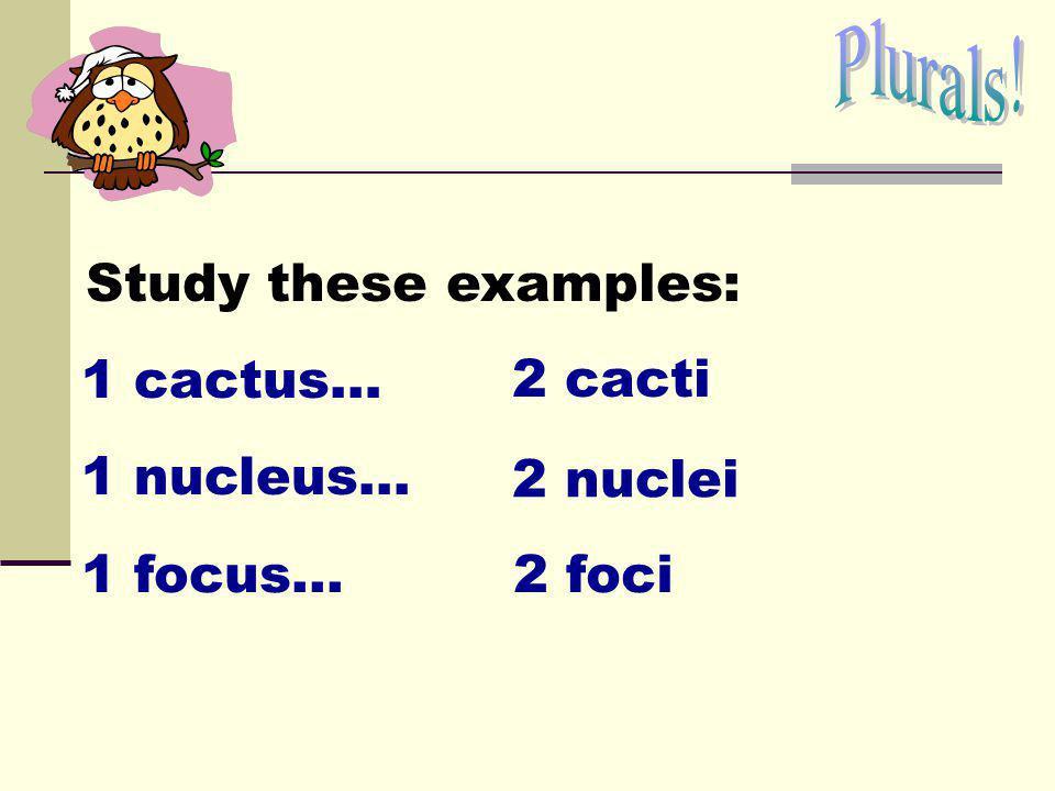 Plurals! Study these examples: 1 cactus… 2 cacti 1 nucleus... 2 nuclei 1 focus... 2 foci