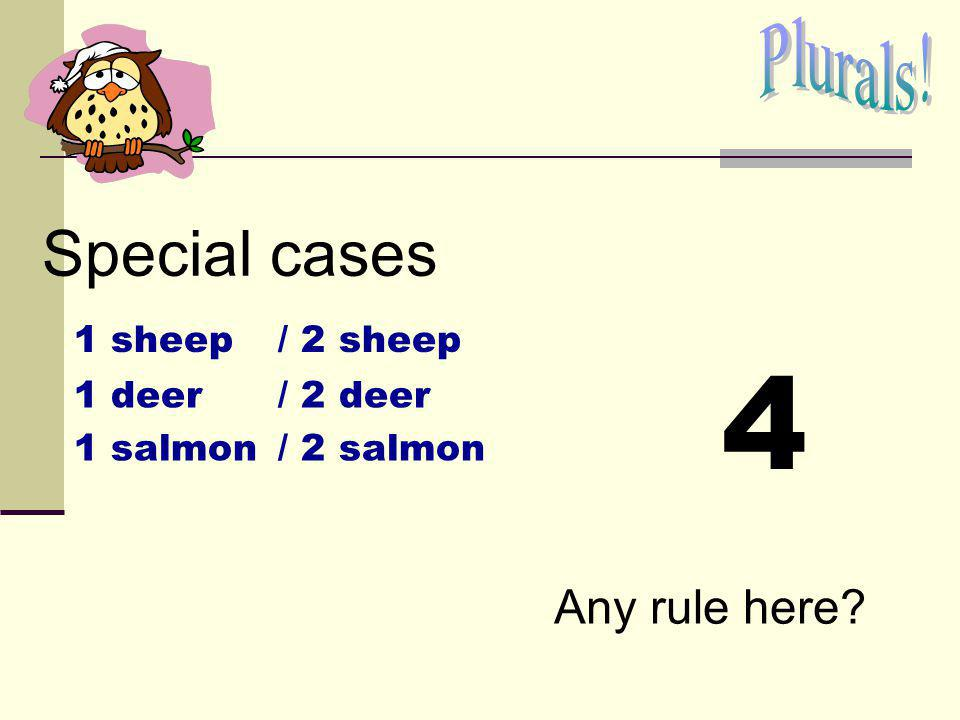 4 Special cases Plurals! Any rule here 1 sheep / 2 sheep