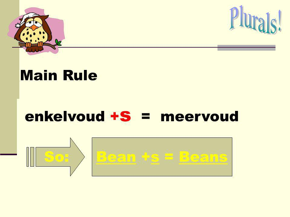 Plurals! Main Rule enkelvoud +s = meervoud So: Bean +s = Beans