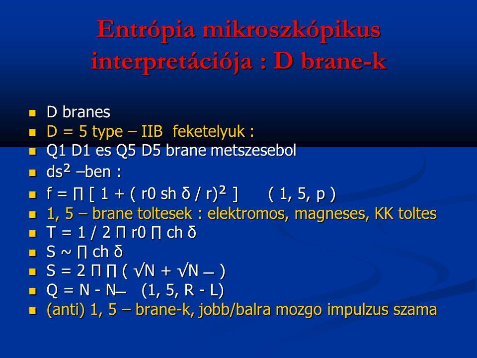 Entrópia mikroszkópikus interpretációja : D brane-k