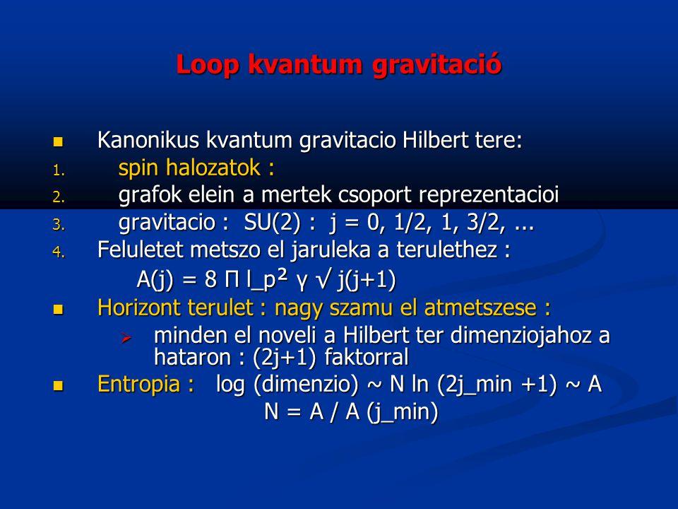 Loop kvantum gravitació