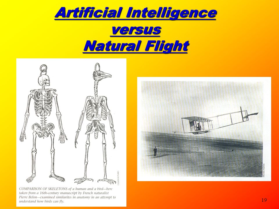 Artificial Intelligence versus Natural Flight