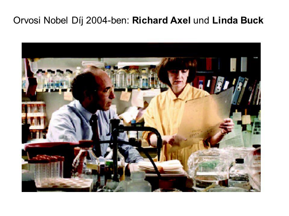 Orvosi Nobel Díj 2004-ben: Richard Axel und Linda Buck