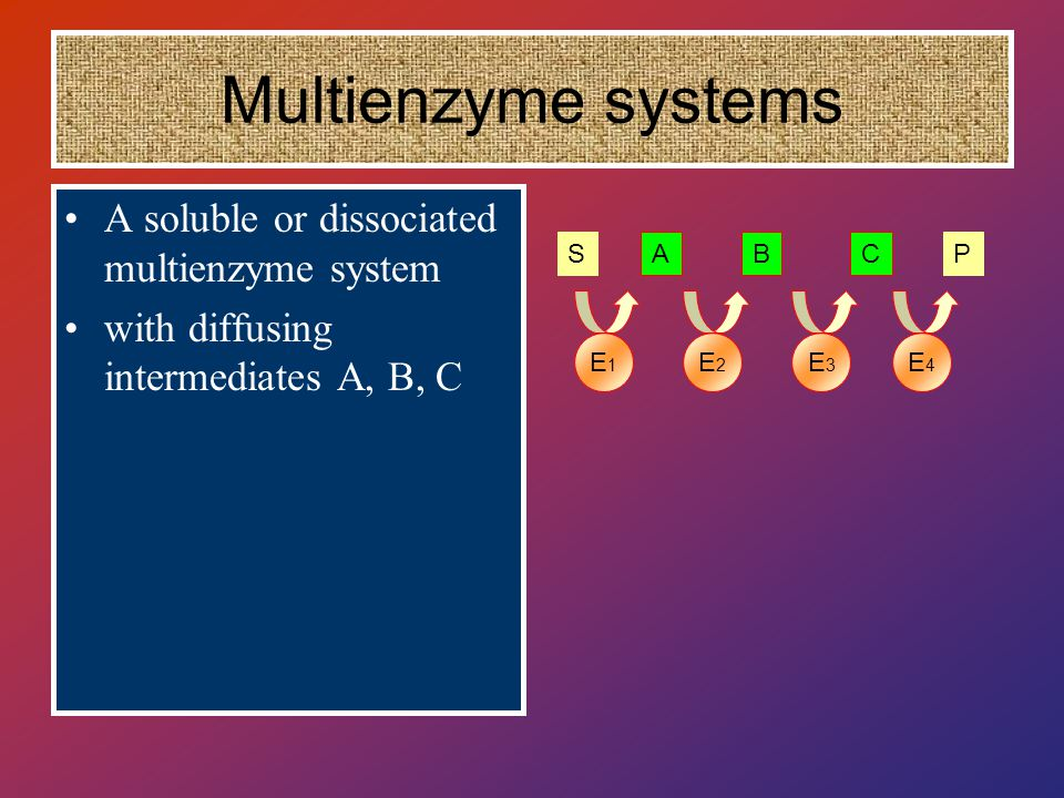 Multienzyme systems A soluble or dissociated multienzyme system