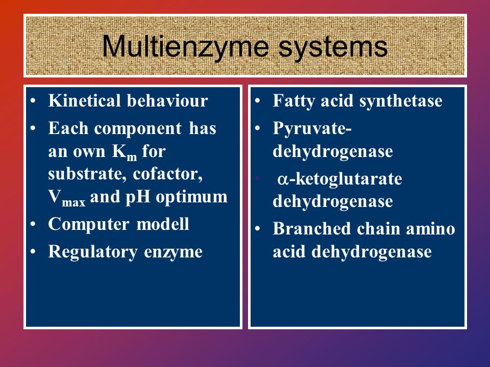 Multienzyme systems Kinetical behaviour