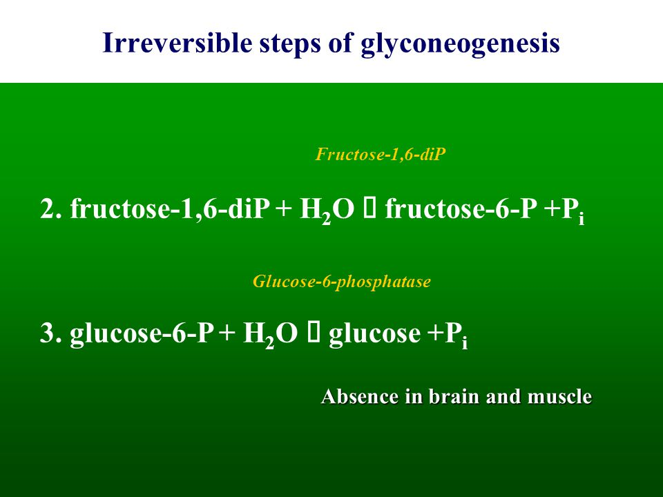 Irreversible steps of glyconeogenesis