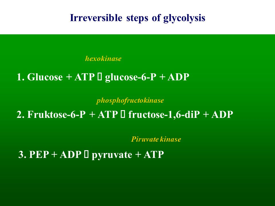 Irreversible steps of glycolysis