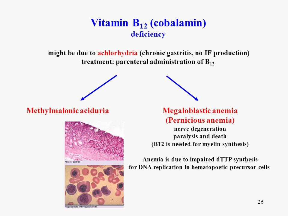 Vitamin B12 (cobalamin) deficiency Methylmalonic aciduria