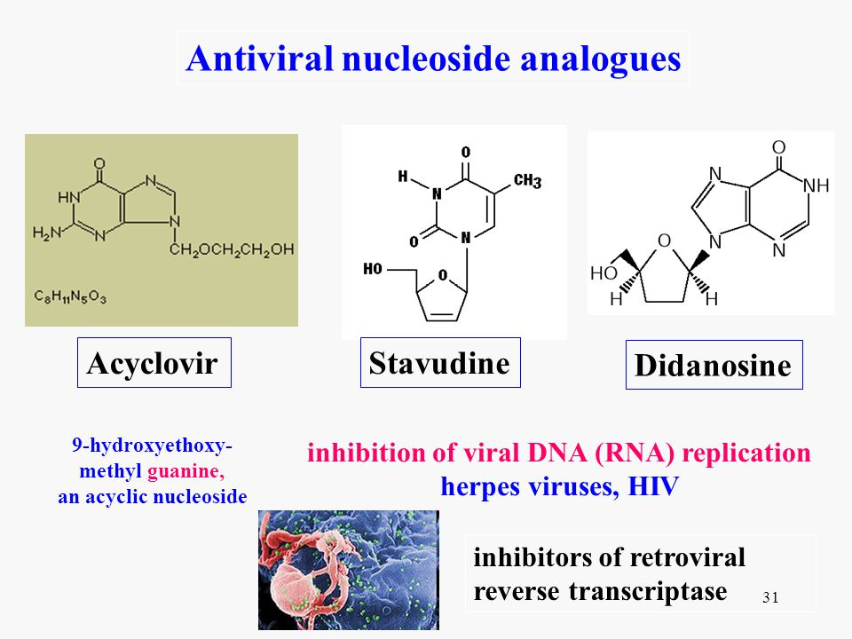 inhibition of viral DNA (RNA) replication