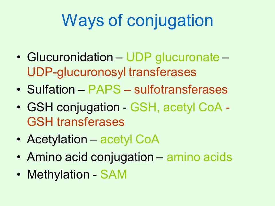 Ways of conjugation Glucuronidation – UDP glucuronate – UDP-glucuronosyl transferases. Sulfation – PAPS – sulfotransferases.