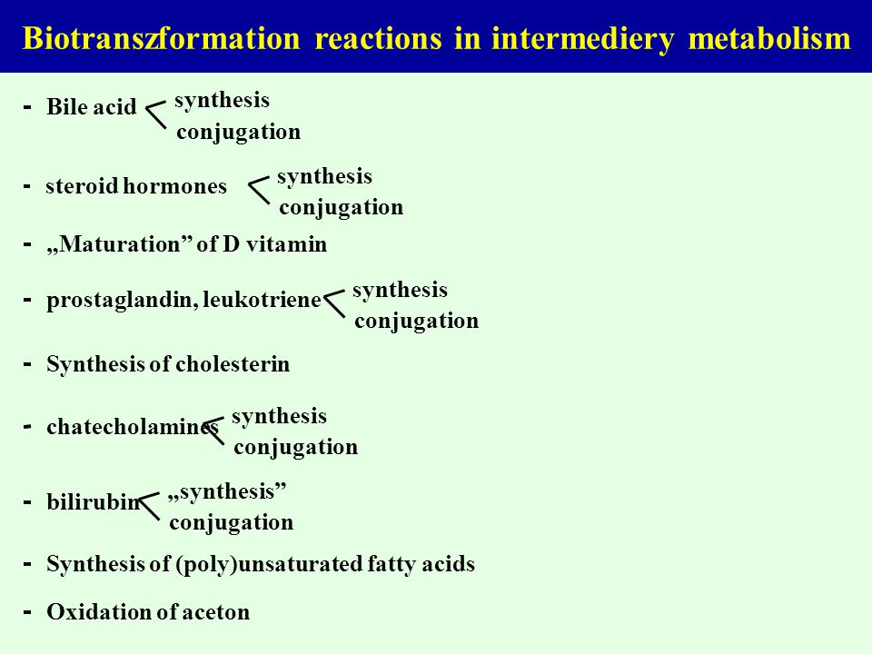 Biotranszformation reactions in intermediery metabolism