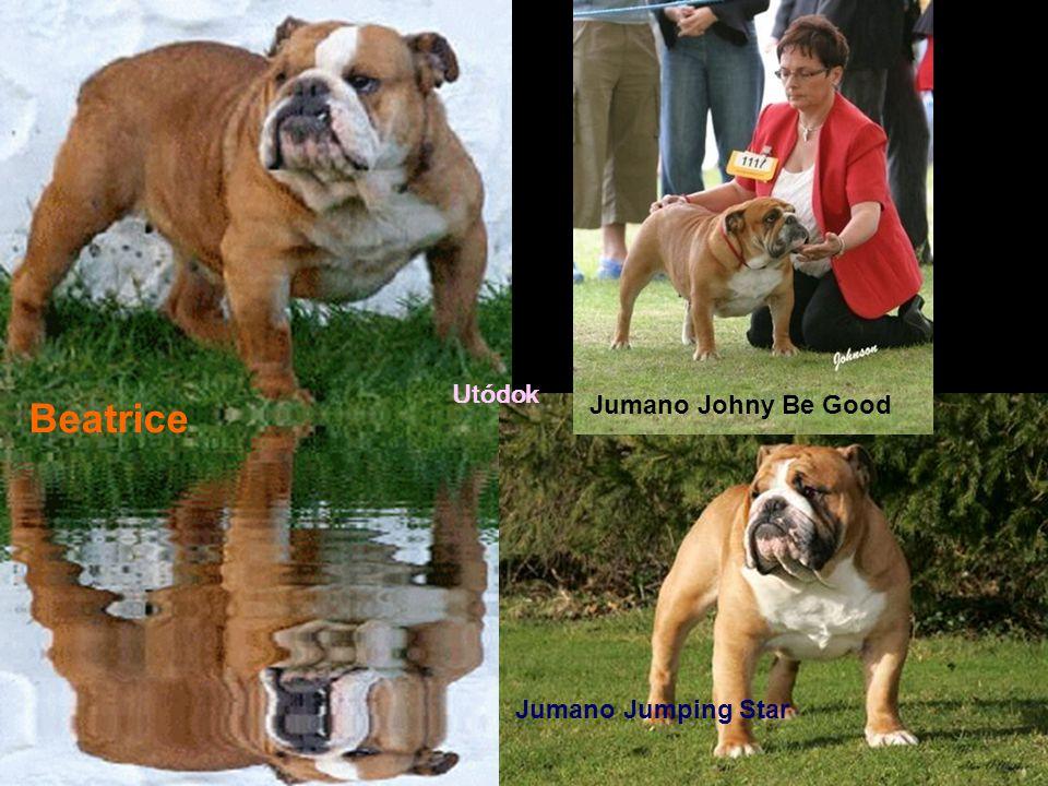 Utódok Beatrice Jumano Johny Be Good Jumano Jumping Star