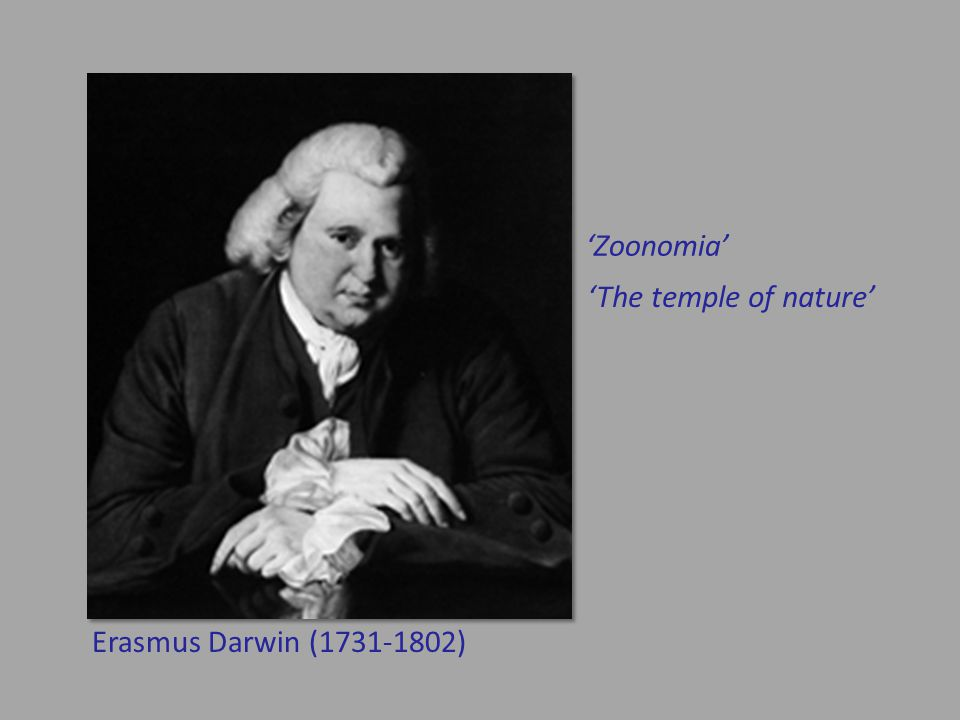 'Zoonomia' 'The temple of nature' Erasmus Darwin (1731-1802)