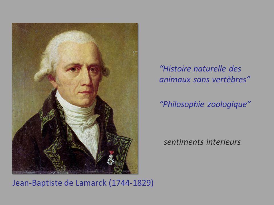 Histoire naturelle des