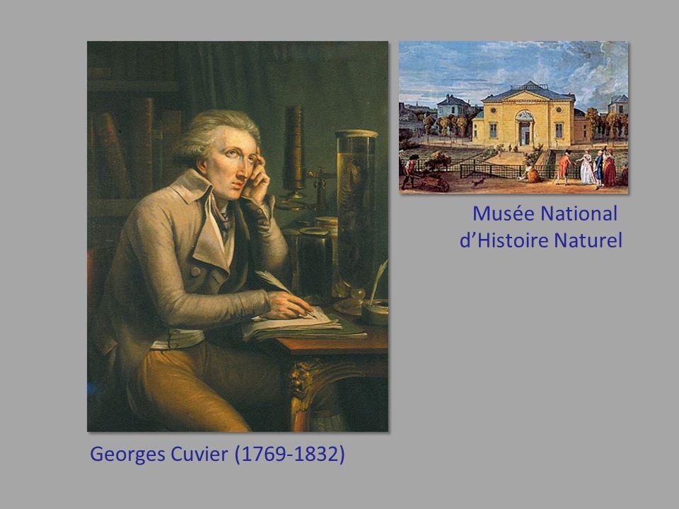 Musée National d'Histoire Naturel Georges Cuvier (1769-1832)