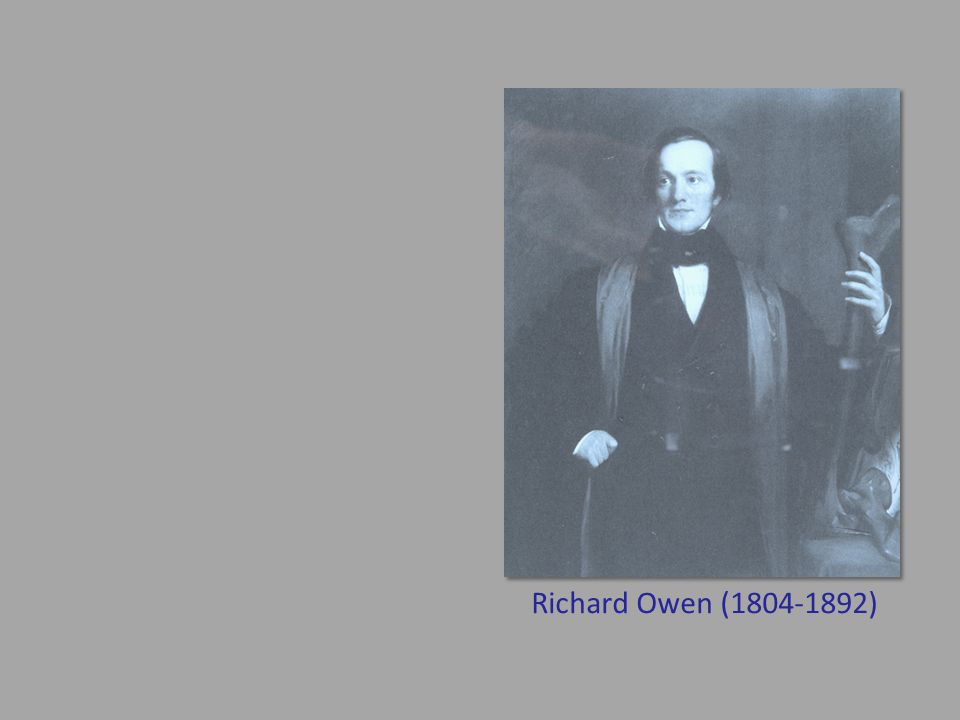 Richard Owen (1804-1892)