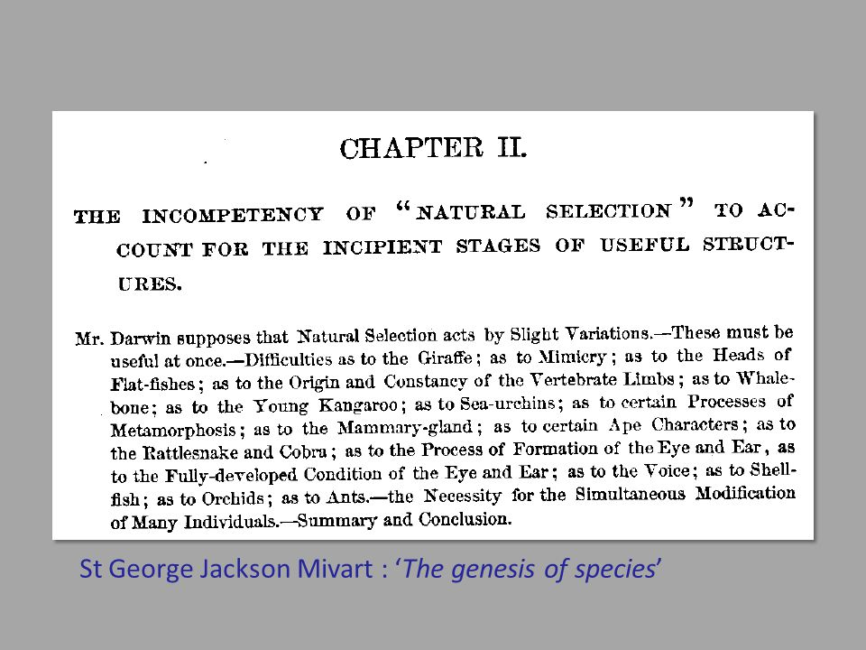 St George Jackson Mivart : 'The genesis of species'