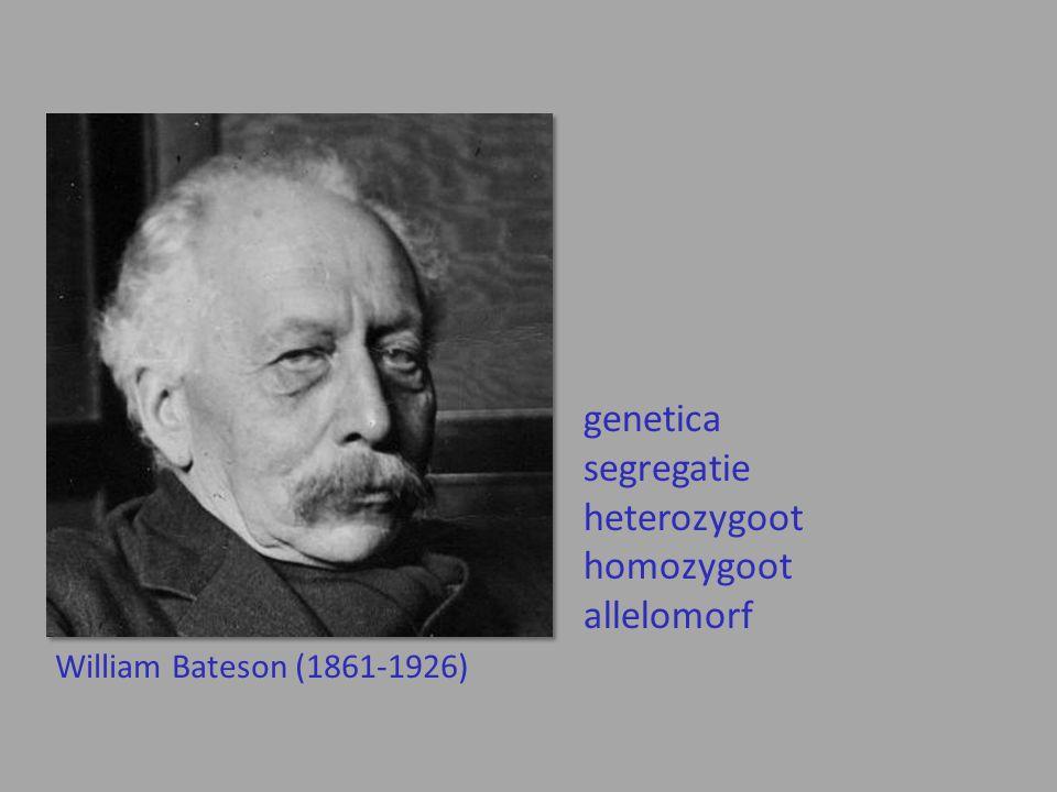 genetica segregatie heterozygoot homozygoot allelomorf