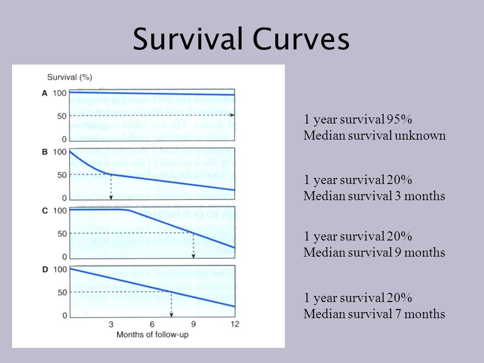 Survival Curves 1 year survival 95% Median survival unknown