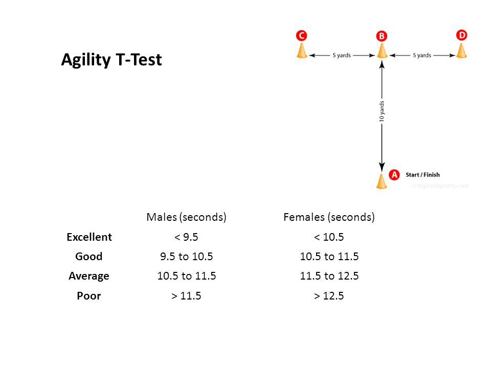 Agility T-Test Males (seconds) Females (seconds) Excellent < 9.5