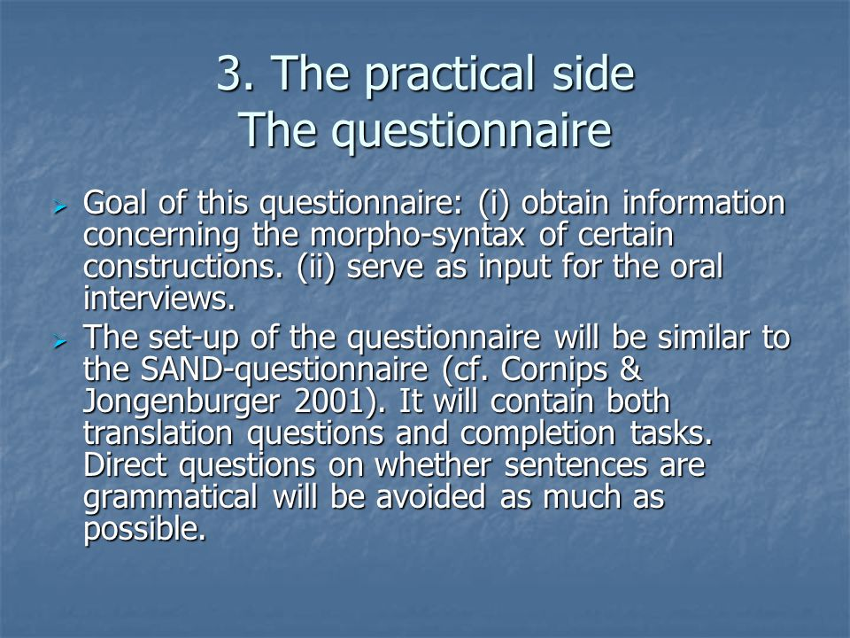 3. The practical side The questionnaire