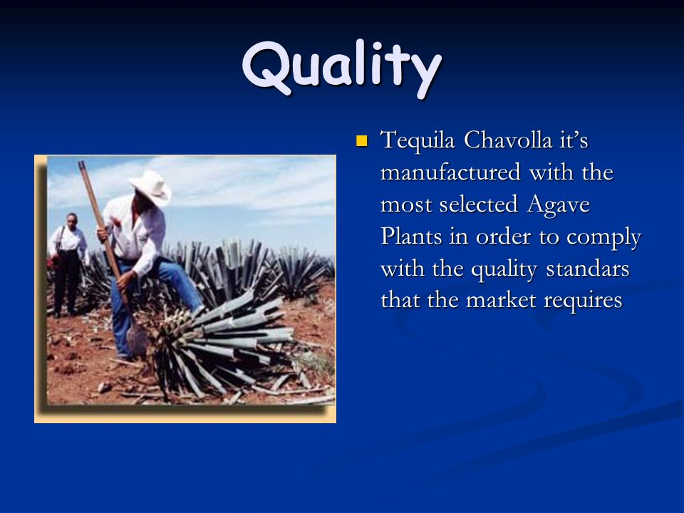 Quality Tequila Chavolla it's manufactured with the most selected Agave Plants in order to comply with the quality standars that the market requires.