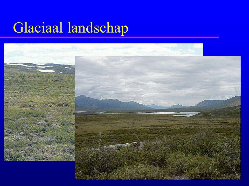 Glaciaal landschap