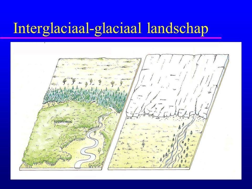 Interglaciaal-glaciaal landschap