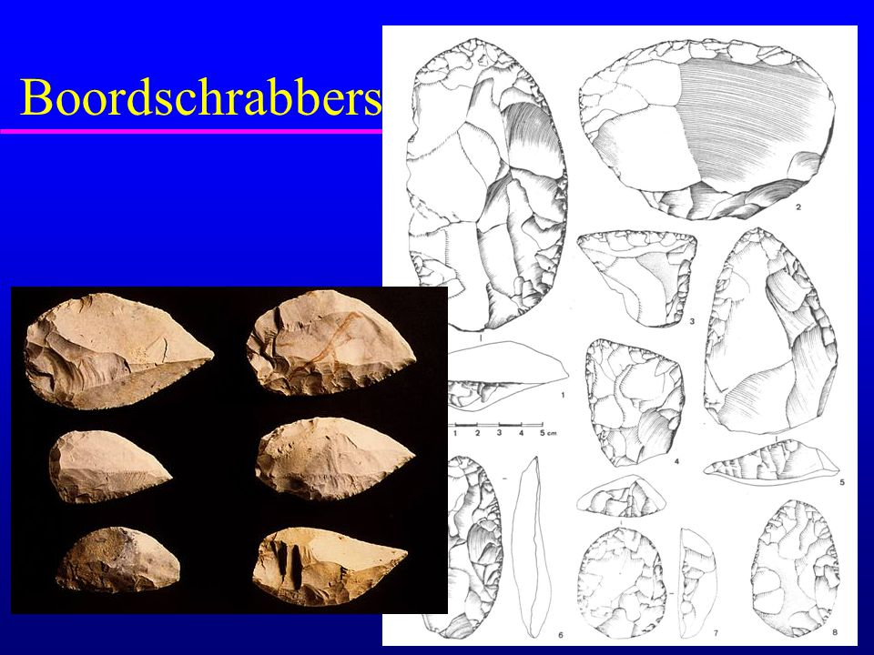Boordschrabbers