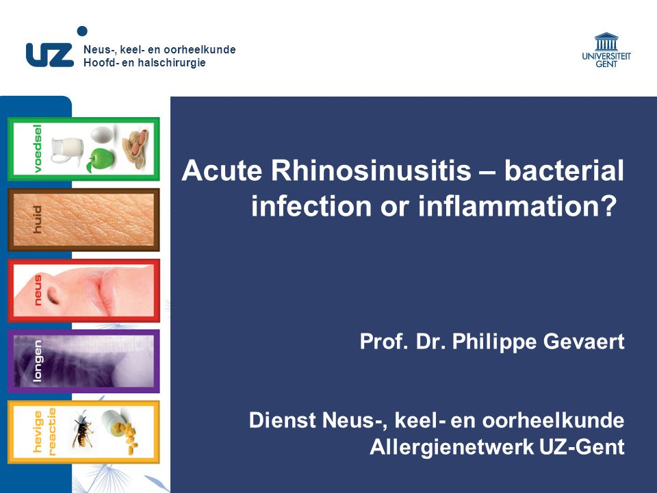 Acute Rhinosinusitis – bacterial infection or inflammation. Prof. Dr