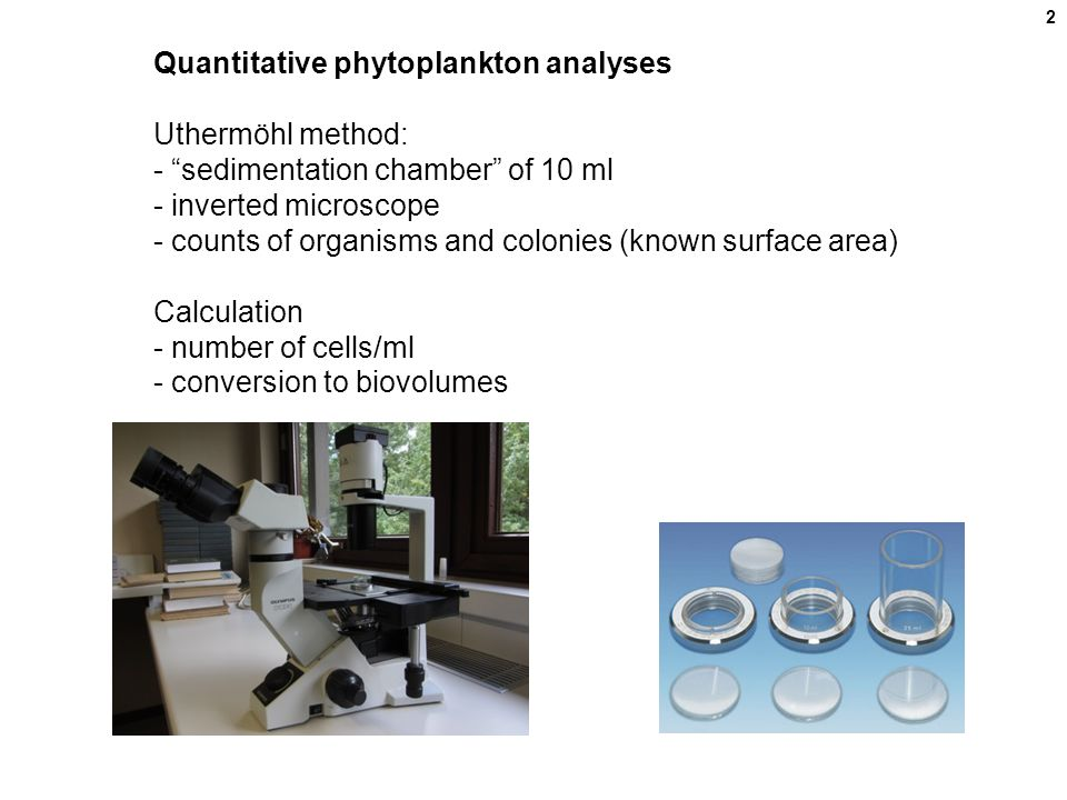 Quantitative phytoplankton analyses