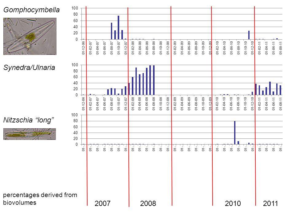 Gomphocymbella Synedra/Ulnaria Nitzschia long 2007 2008 2010 2011