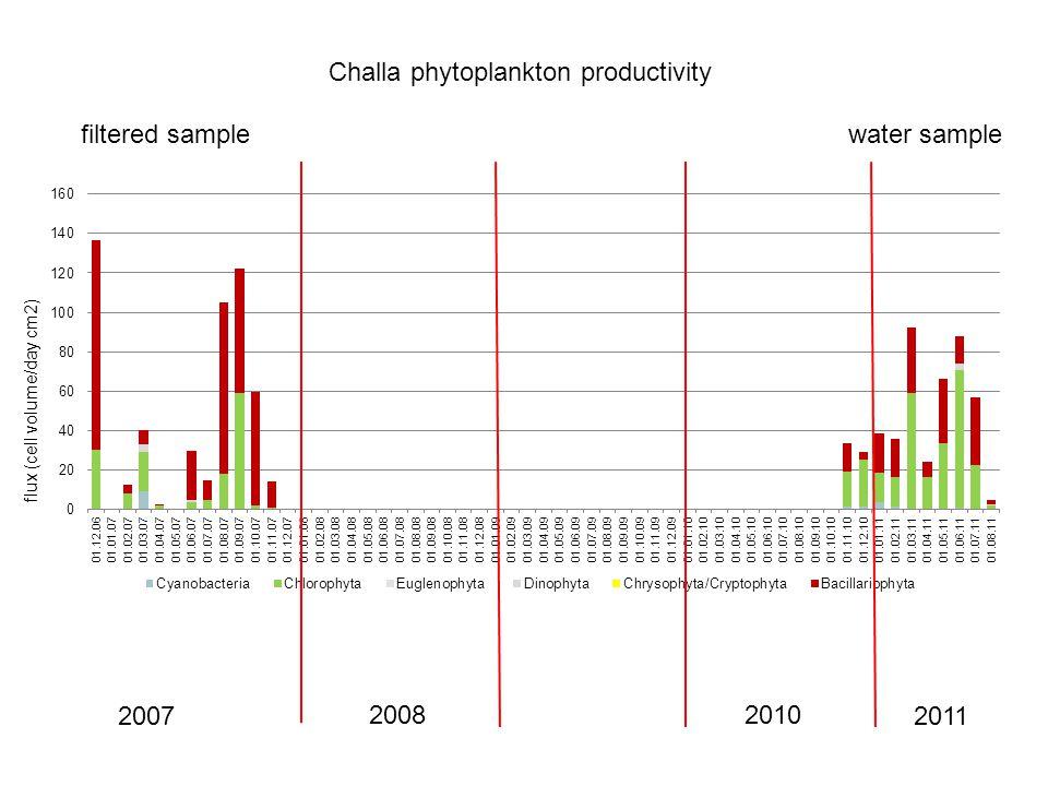 Challa phytoplankton productivity