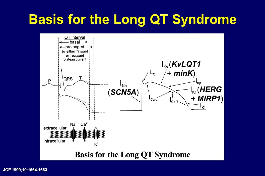 Basis for the Long QT Syndrome