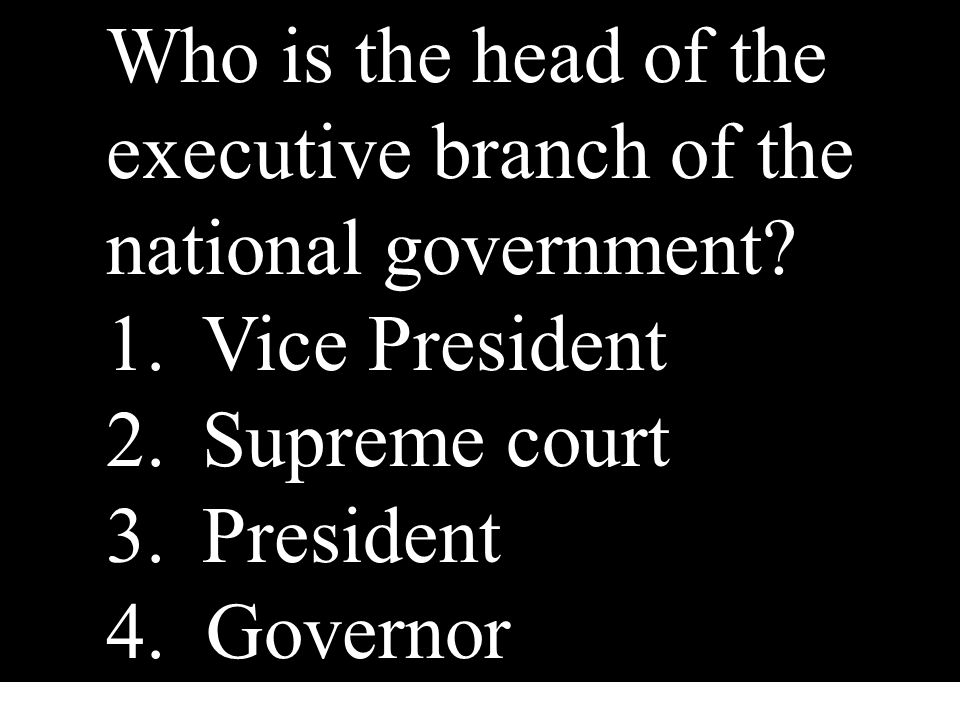 Who is the head of the executive branch of the national government
