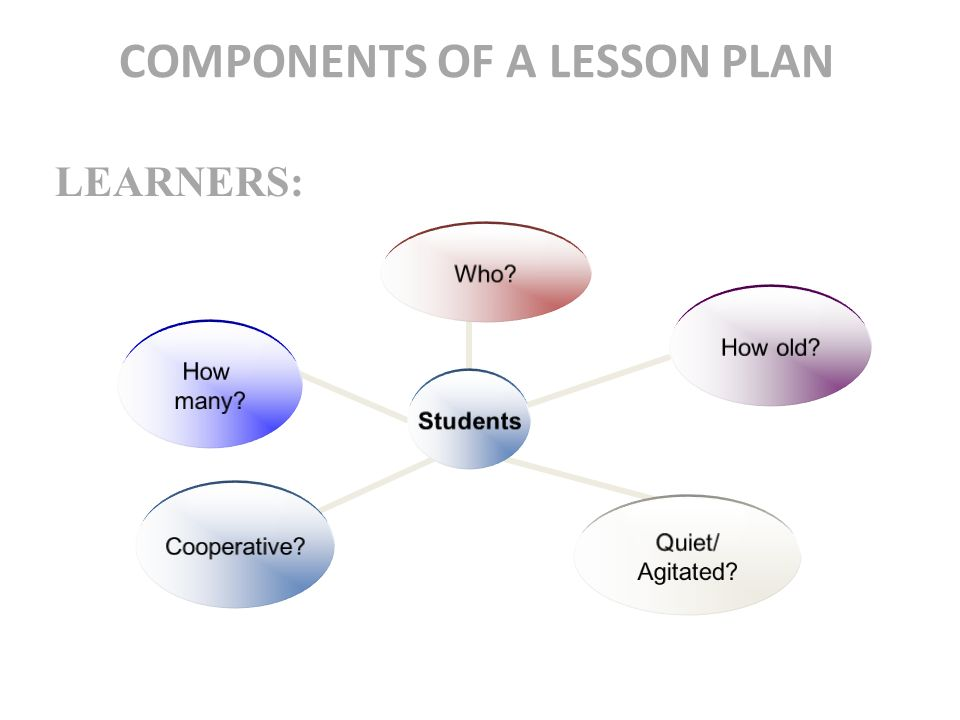 Elements of a business plan lesson plan